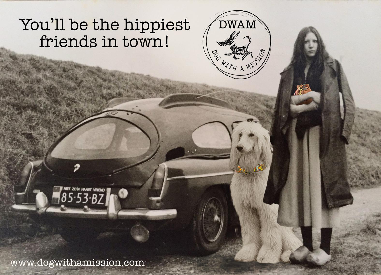 auto-hond-fb